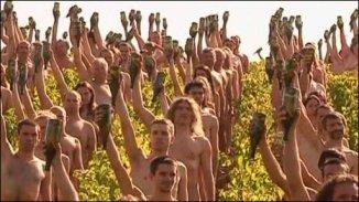 Vineyard Warming