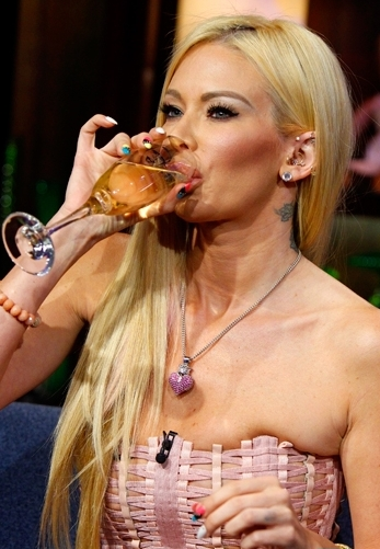 Jenna Jameson 00 in the Bar None