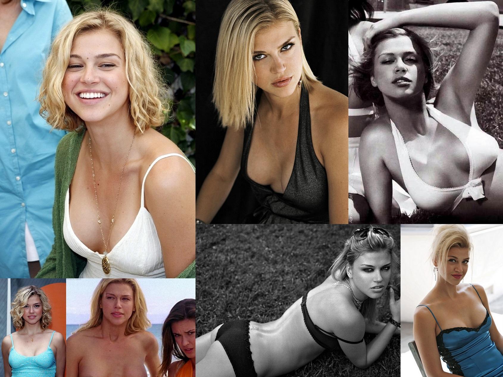 Adrianne Lee Palicki Nude