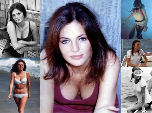 Jacqueline Bisset Bar None wallpaper (AlKHall Bar None)